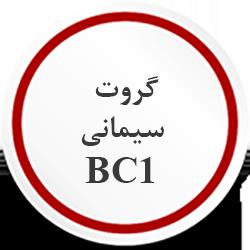 گروت سیمانی BC1