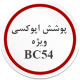 پوشش اپوکسی ویژه BC54